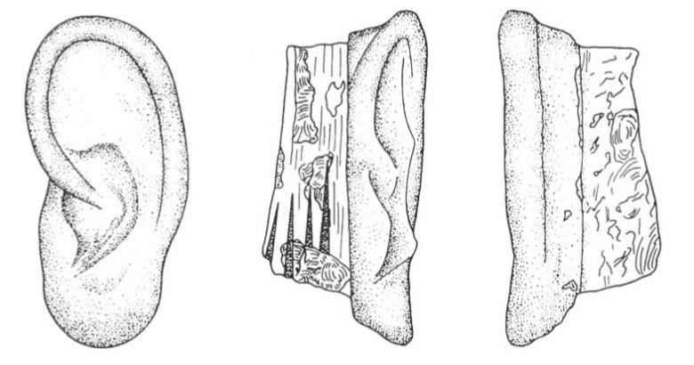 obsidian ear drawing 2
